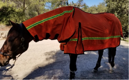 https://www.indiegogo.com/projects/first-ever-fire-retardant-horse-blanket-with-gps#/comments