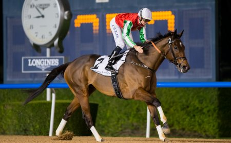 North America выигрывает Al Maktoum Challenge R1/фото: @ Dubai Racing Club