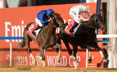 На фото: Thunder Snow в борьбе за Dubai World Cup/автор: @ Dubai Racing Club // Neville Hopwood