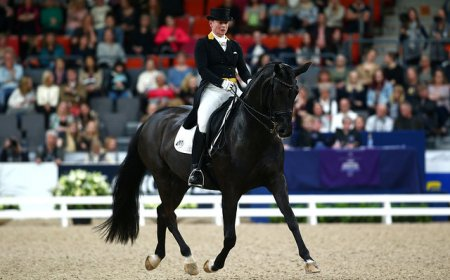 Изабель Верт и Weihegold OLD/фото: @ Charlie Crowhurst/Getty Images/FEI