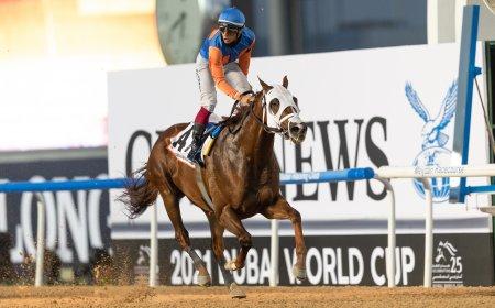 Zenden и Антонио Фрезу выигрываютDubai Golden Shaheen/автор: ©Dubai Racing Club // Neville Hopwood
